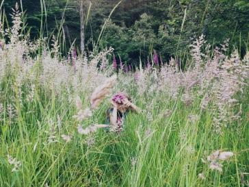Meadow of foxglove flowers